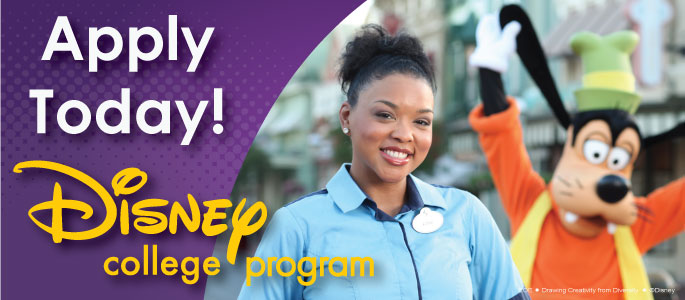 disney college internship program